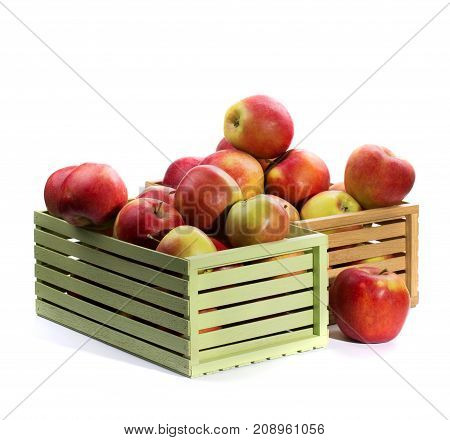 Two boxes of large ripe red apples