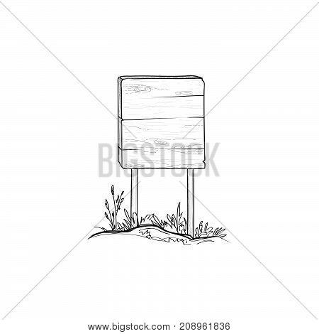 Arrow-tree-sketch-1