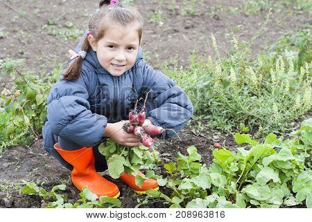 Girl Holding A Radish