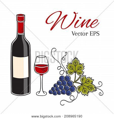 Red wine bottle, glass and grapes vector illustration isolated on white background, hand drawn doodle sketch.
