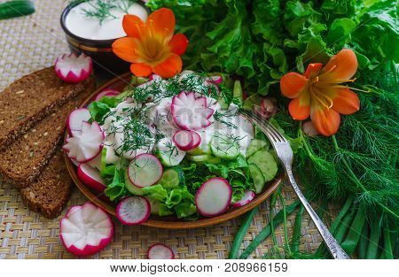 fresh sliced cucumber salad and radishes with sour cream and herbs.