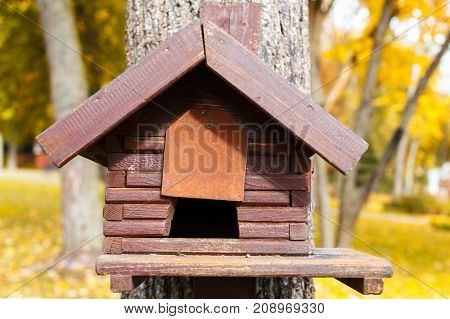 A house for birds or a squirrel on a tree. An empty house for birds in the forest