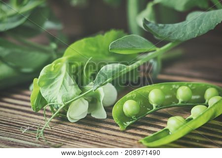 Pods Of Green Peas And Pea On Dark Wooden Surface