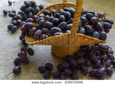 Clusters of fresh sweet dark grapes lying in a basket on a table.
