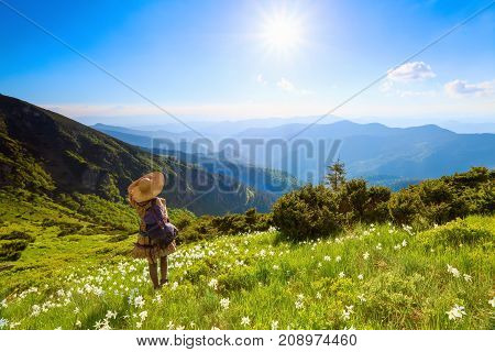 The lawn with white daffodils in the high mountains landscapes. The girl in overknees stockings romantic dress back sack and straw hat. Unbelievable summer landscape.