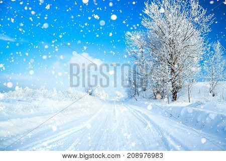 winter landscape with road forest and blue sky. wintry path. frosty sunny day. snowy winterly landscape.