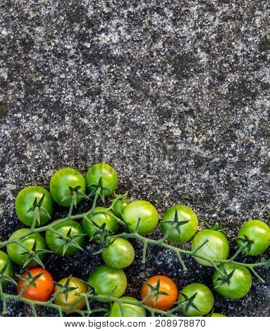 Food background: green red cherry tomatoes stone background top view