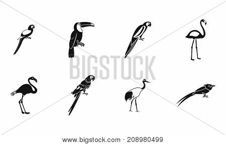 Exotic birds icon set. Simple set of exotic birds vector icons for web design isolated on white background