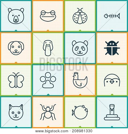 Nature Icons Set. Collection Of Diver, Bear, Serpent And Other Elements