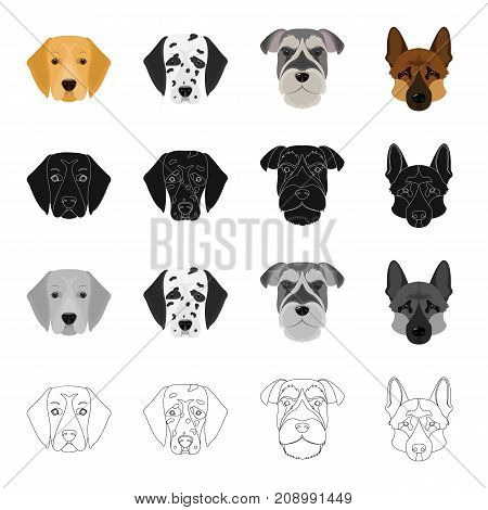 Dalmatian, terrier, shepherd and other  icon in cartoon style.Dog, animal, home, icons in set collection