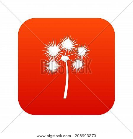 Spiny tropical palm tree icon digital red for any design isolated on white vector illustration