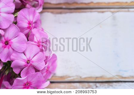 Pink flowers lying on a wooden table