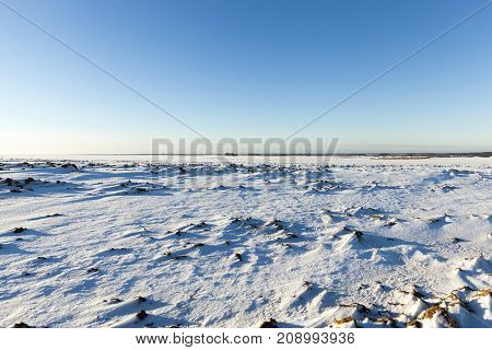 surface of the snow on the field. The photo was taken in winter On snow visible bumps and holes, as well as plants. Blue sky in the background