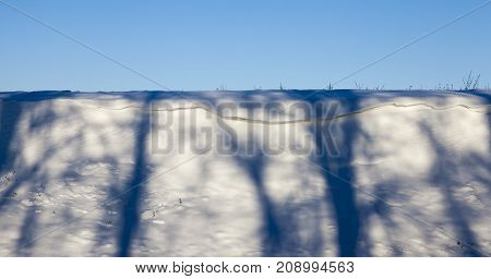 snowdrifts on the hill, lit by sunlight. on the surface there are several shadows from bare deciduous trees. photo close-up on a background of blue sky