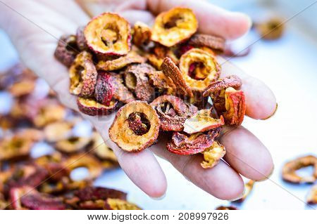 The Red Dried Chinese Hawthorn Placed on One Hand. Hawthorn can be used as the traditional Chinese medicine which helps digestion. Authentic Shot.