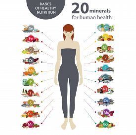 20 Minerals For Human Health