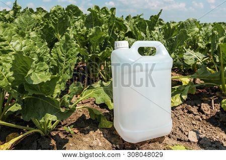 Sugar Beet Crop Protection, Blank Pesticide Jug As Mock Up In Field