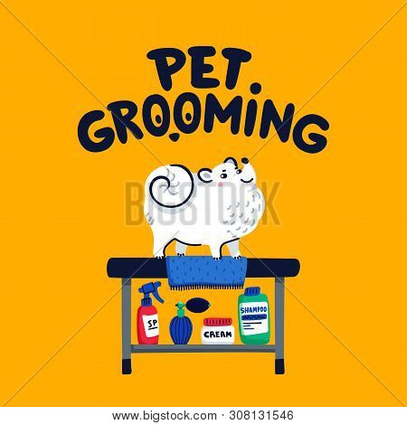 Pet Grooming Concept. White Lap-dog On Grooming Table At Salon. Dog Care, Grooming, Hygiene, Health.