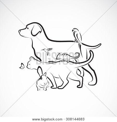 Vector Group Of Pets - Dog, Cat, Parrot, Rabbit, Butterfly, Hummingbird, Isolated On White Backgroun