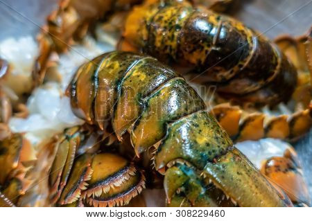 Clean Raw Lobster Tails Prepared For Grilling