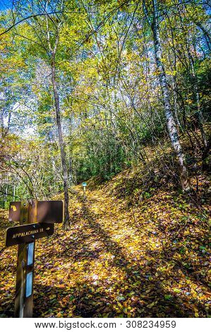 Scenic Mountain Views Along Virginia Creeper Trail