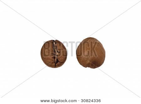 Two Coffee Beans