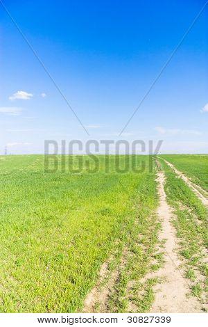 Forward To Pradise Through the Green
