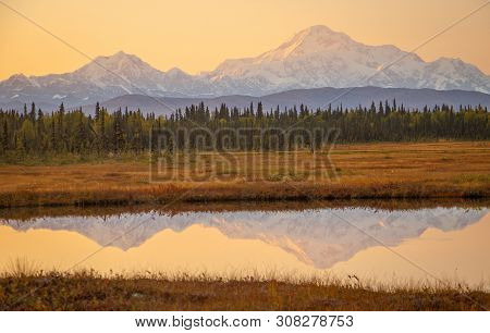 Sunrise Colors Above Mt. Mckinley From Petersville Road In Alaska