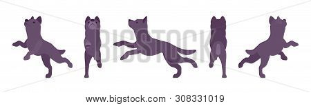 Black dog jumping. Medium size compact pet, family companion for active fun, home guarding, farm security, cute agile breed. Vector flat style cartoon illustration, white background, different views poster