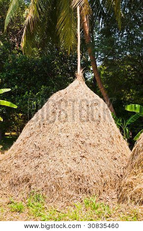 The Pile Of Straw