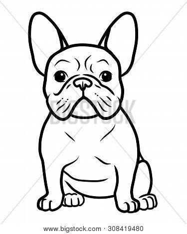 French Bulldog Black And White Hand Drawn Cartoon Portrait Vector Illustration. Funny French Bulldog