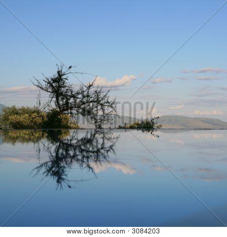 Reflexion im Schwimmbad Lake Manyara