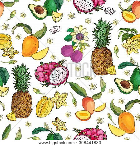 Exotic Fruits Frame.avocado, Carambola, Mango, Pitahaya, Pineapple, Passionfruit.bright Summer Vecto