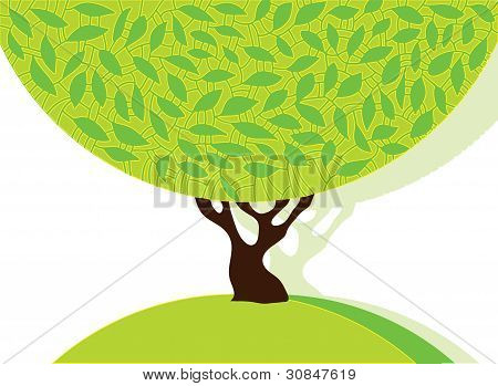 Tree with green leafage.