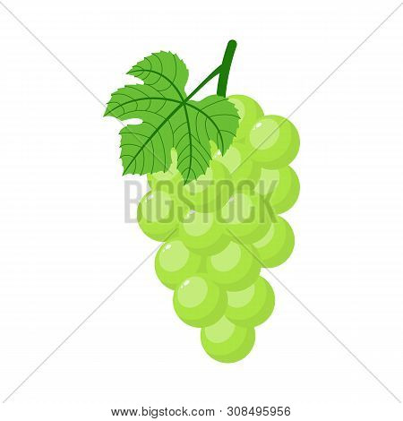 Green Grapes Isolated On White Background. Bunch Of Green Grapes With Stem And Leaf. Cartoon Style.