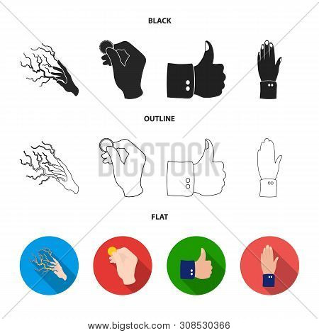 Isolated Object Of Animated And Thumb Icon. Set Of Animated And Gesture Stock Vector Illustration.