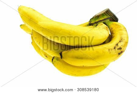 Ripe Gros Michel banana isolated on white background, Krua Hom Thong Plants grown in Thailand poster