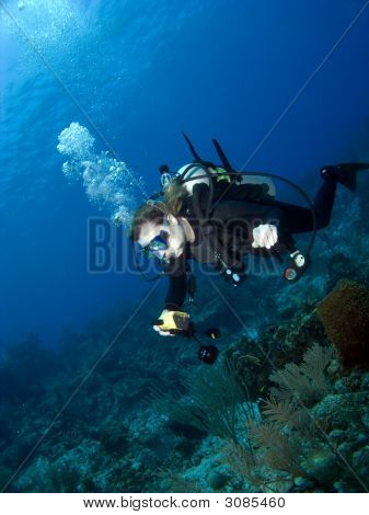 Underwater Photographer swimming over a Cayman Brac Reef poster