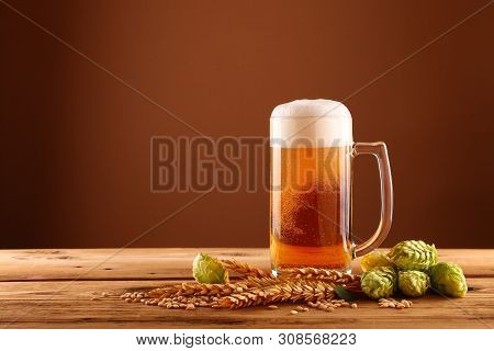 Close up one glass mug of beer with froth and bubbles, green hops and barley grain and spikes on wooden table over dark brown background with copy space, low angle side view poster