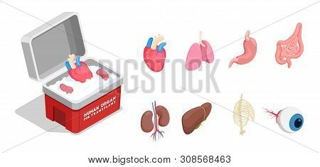 Isometric Icons Set With Different Donor Human Organs For Transplantation Isolated On White Backgrou