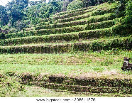 View Of Wat Phu Champasak Temple In Laos