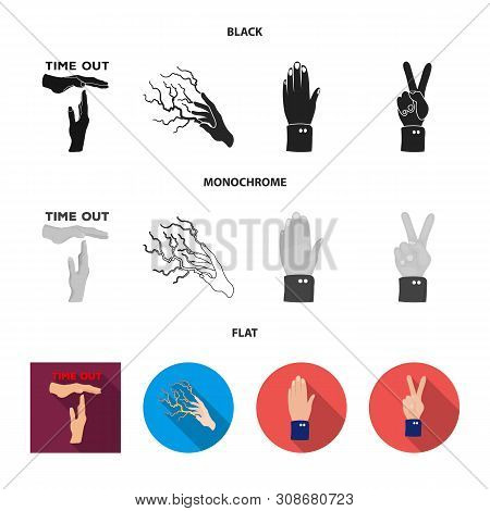 Vector Design Of Animated And Thumb Icon. Collection Of Animated And Gesture Vector Icon For Stock.