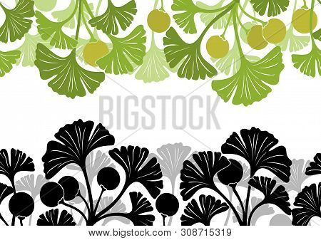 Seamless Background With Colorful And Black And Grey Pictogram Leaves Of Ginkgo Biloba Tree, Nature