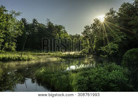 Sunrays At A Swamp In The Adirondack Park New York