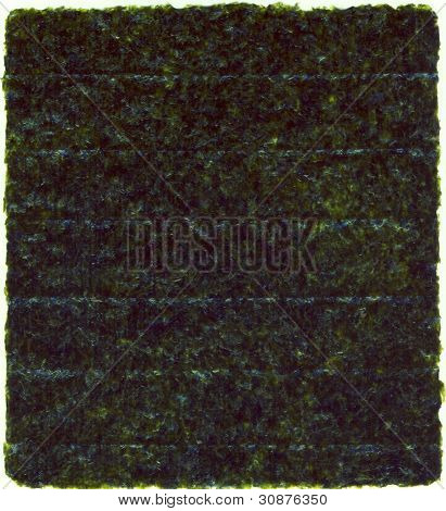 Nori dried sheet isolated over white