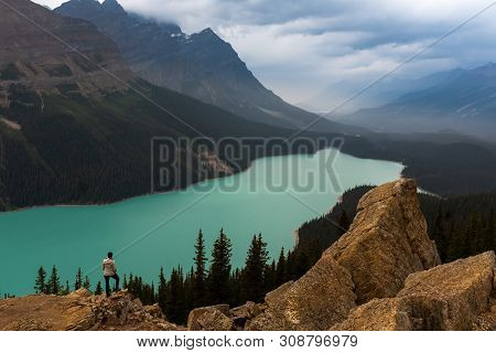 Panoramic View Of Turquoise Lake Peyto With Surrounding Mountains And Forest In The Valley Sunny Sum