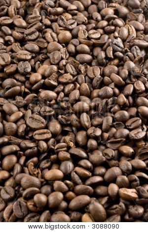 Nice Brown Coffee Beans As A Background