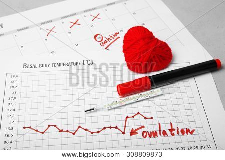 Day Of Female Ovulation In Calendar, Schedule Of Basal Temperature. Time To Conceive Child.