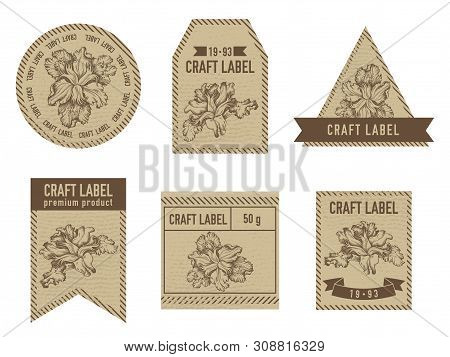 Craft Labels With Iris Japonica Stock Illustration
