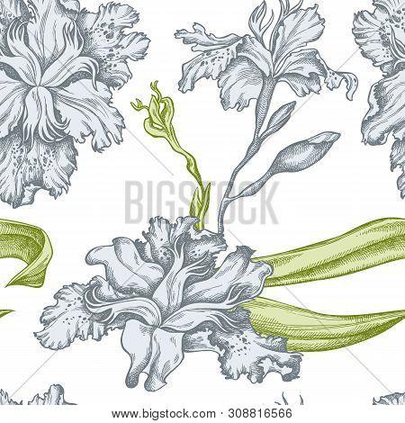 Seamless Pattern With Hand Drawn Pastel Iris Japonica Stock Illustration
